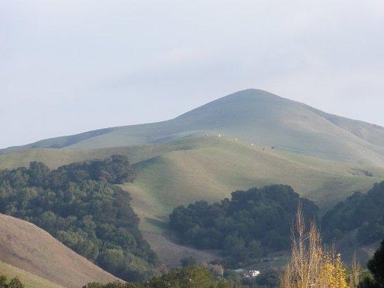 San Ramon, Contra Costa County CA