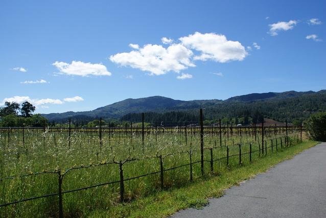 Yountville, Napa County CA