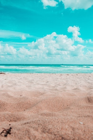 North Miami Beach FL