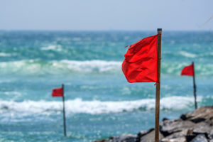 Beach Flags and Water Safety